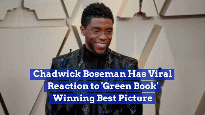 There Was No Grace From Best Pic Oscar Losers