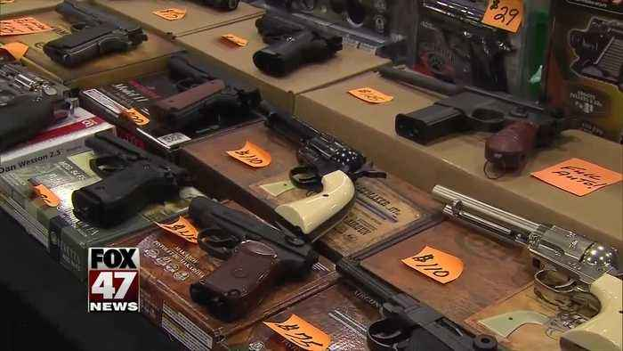House sends guns background check bill to the Senate