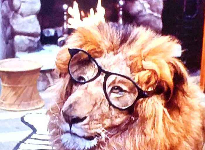 Clarence the Cross-Eyed Lion Movie (1965) Marshall Thompson