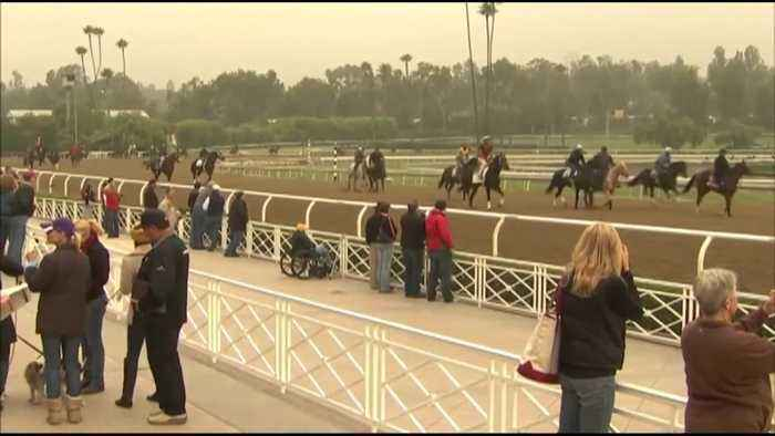 Santa Anita cancels racing after latest horse death