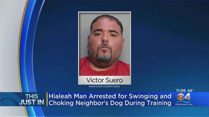 Hialeah Man Arrested For Animal Cruelty After Cell Footage Shows Disturbing Incident