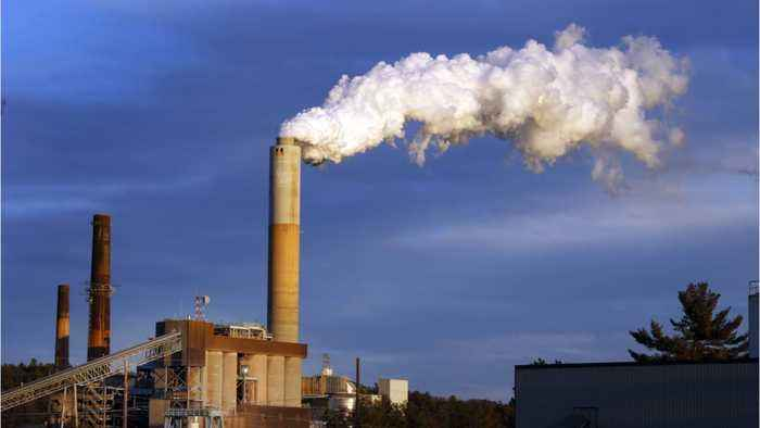 Study Finds U.S. Air Pollution Is Caused By White Consumers But Minorities Suffer More
