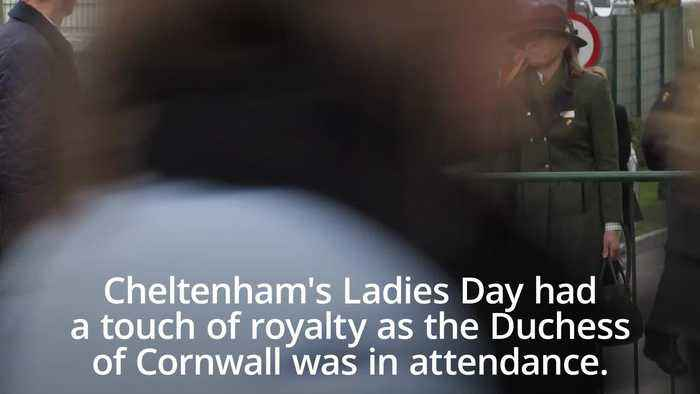 Camilla and Andy Murray attend Ladies Day at the Cheltenham Festival