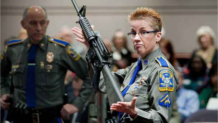 Court Rules Gun Manufacturer Can Be Sued Over Sandy Hook Shooting