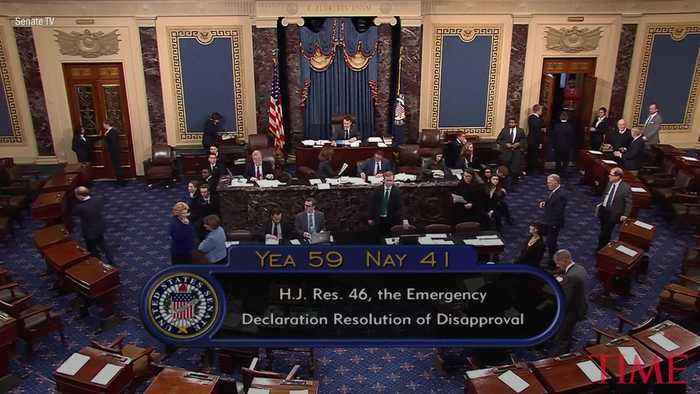Senate Votes to End President Trump's National Emergency at U.S.-Mexico Border