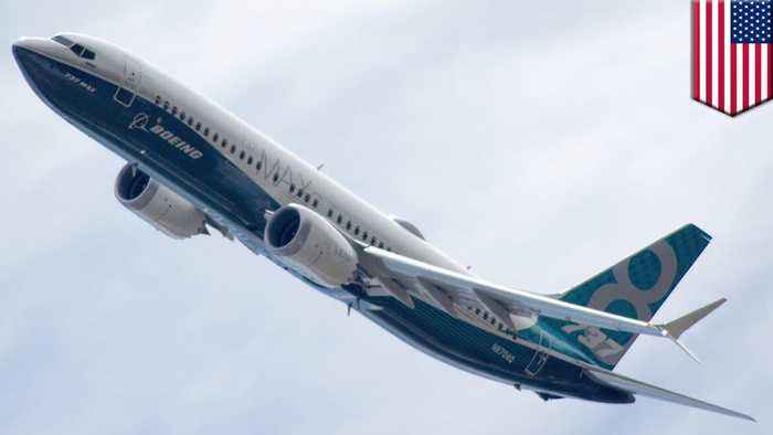 Recent 737 Max 8 crashes unrelated says aviation expert