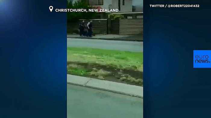 Watch: Footage captures suspect being detained in New Zealand shootings