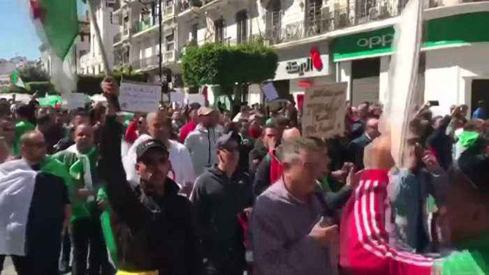 Algerians hold biggest anti-Bouteflika protests