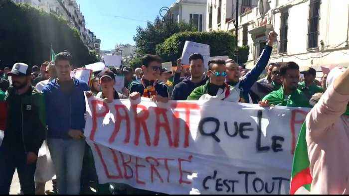 Algeria protests continue despite Bouteflika reform promises