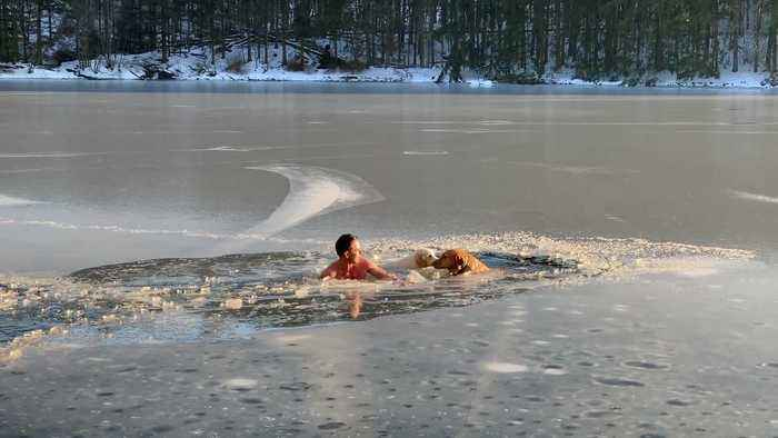 Man and pup rescue two dogs trapped in ice