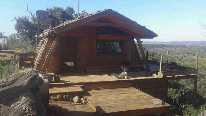 High-flying couple quit rat race to live off-grid in a hand-built hut