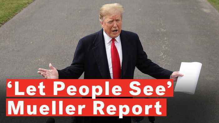 Trump: If Public Wants To See Mueller Report 'Let Them See It'