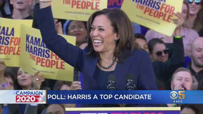 New Polls Confirm Kamala Harris Is A Top Dem. Candidate For 2020