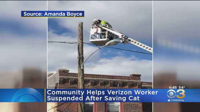 Community Helps Verizon Worker Who Was Suspended After Saving Cat
