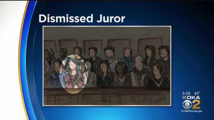 Court Transcript Shows Why Juror Was Dismissed In Michael Rosfeld Trial