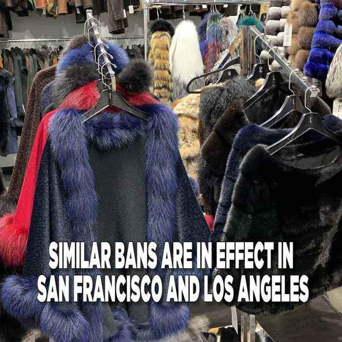 Fur Sale Ban Coming To New York?