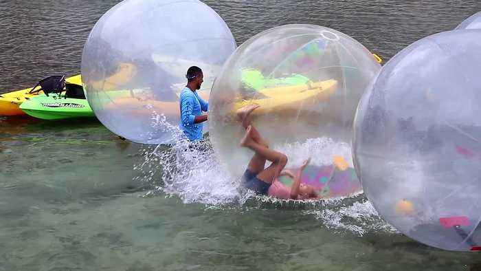 Huge Hamster Ball Hilarity