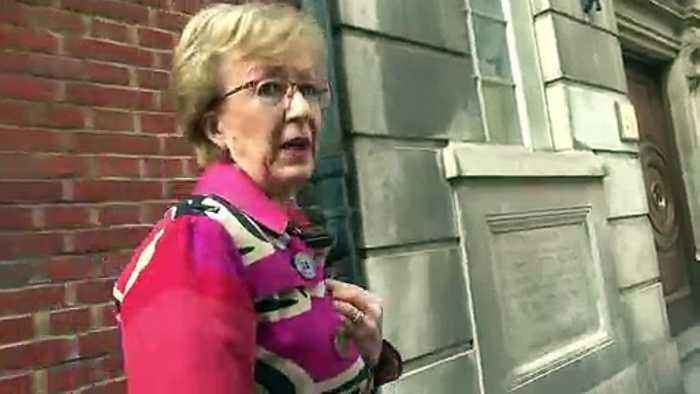 Leadsom 'sure' of PM's determination to deliver Brexit