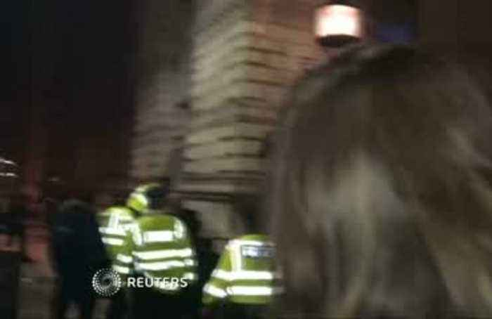 Man attempts to climb Downing Street security gate