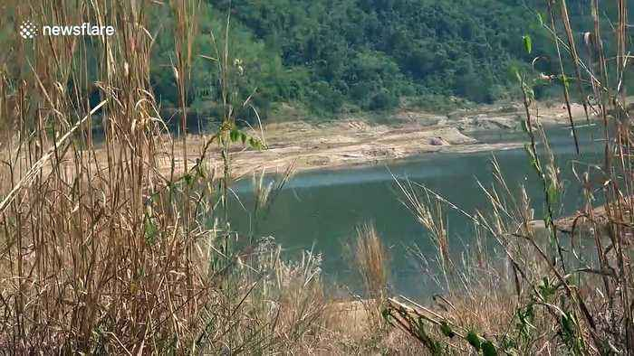 Reservoir dries up as popular Thai tourist resort suffers crippling water shortage crisis