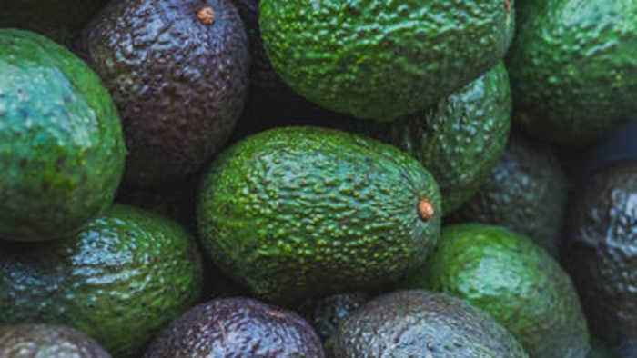 Trump's Border Threat Causes Avocado Prices to Rise