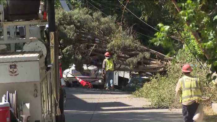 Gusty Southern California Winds Topple Trees, Leave Thousands Without Power