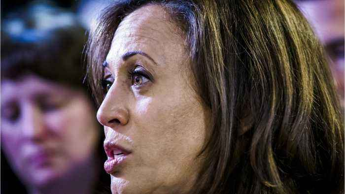 Kamala Harris Owns Gun 'For Personal Safety,' Wants To Ban Assault Weapons