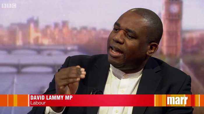 David Lammy likens Tory Brexiteers to Nazis