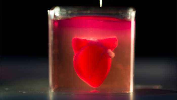 World's 'First' 3D Printed Heart With Human Tissue Created