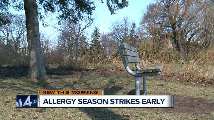 Is global warming making your allergies worse?