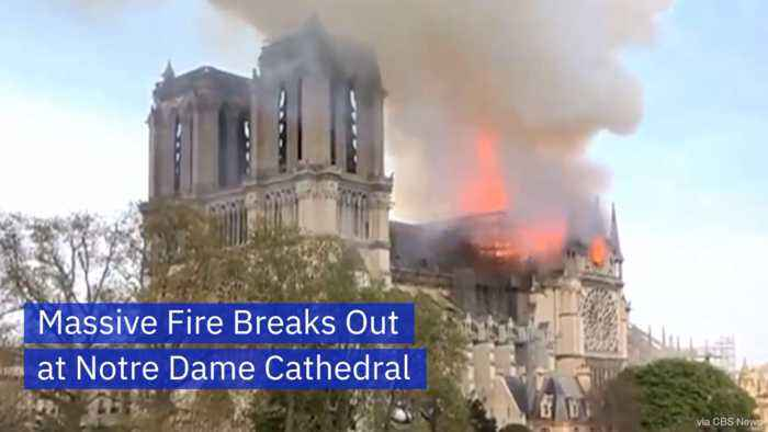 Notre Dame Is In Flames And The World Is In Horror