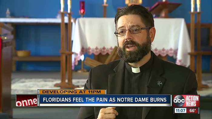 Florida architect reacts to Notre Dame church fire