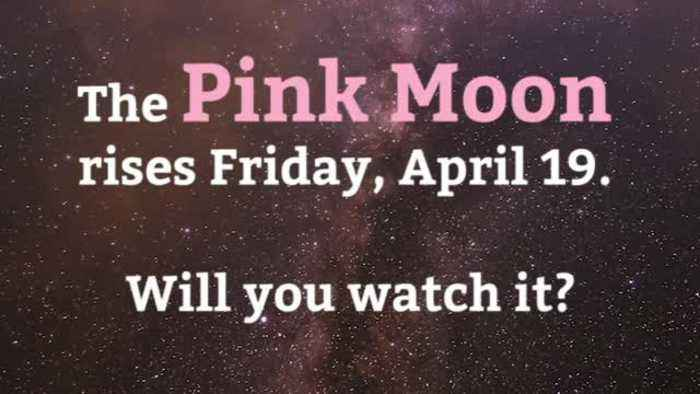 The Pink Moon Is Coming
