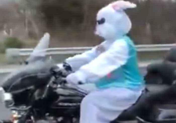 In the Egg-spress Lane: Easter Bunny Spotted Riding Motorbike on Route 37