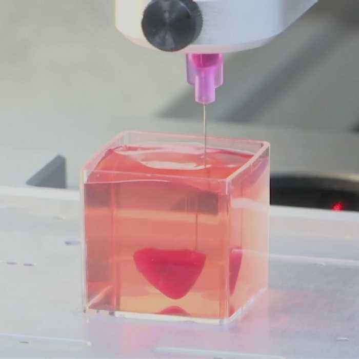 This is the first ever 3D-printed heart with real human tissue and vessels