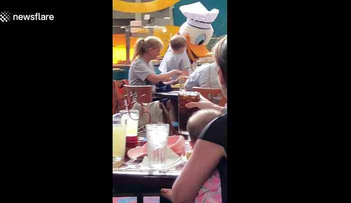 Two-year-old girl's cutest reaction to seeing Donald Duck at Florida's Disney World