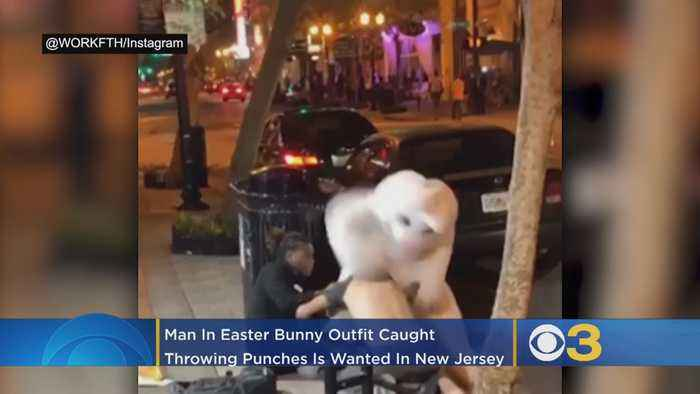 Man In Easter Bunny Suit Involved In Fight Wanted In New Jersey For Car Burglaries