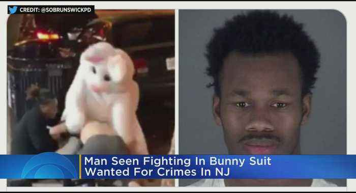 Man Involved In Bunny Brawl Wanted In N.J.
