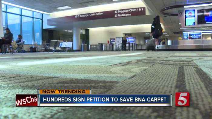 There's a petition to save BNA's carpet 'from extinction'
