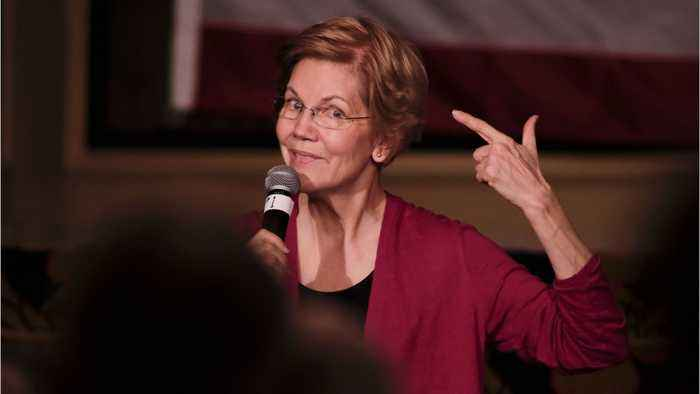 Warren's Ideas Could Cost Her The Election