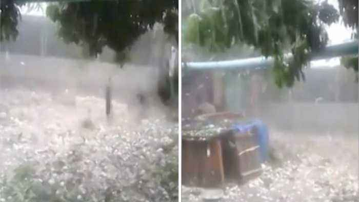 Extreme Storm Pelts South Africa With Giant Chunks Of Hail Tearing Branches Off Trees