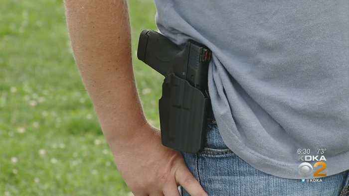 Pa. State Rep. Introduces House Bill To Abolish Concealed Carry Laws