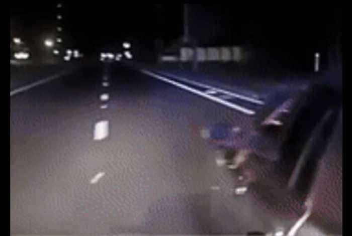 K9 Catches Robbery Suspect After Dramatic Car Chase