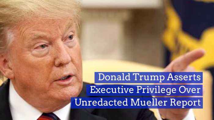 Trump Chooses Executive Privilege Over Mueller Report