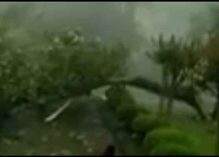 Damaging Storm Tears Through Mississippi Town of McComb