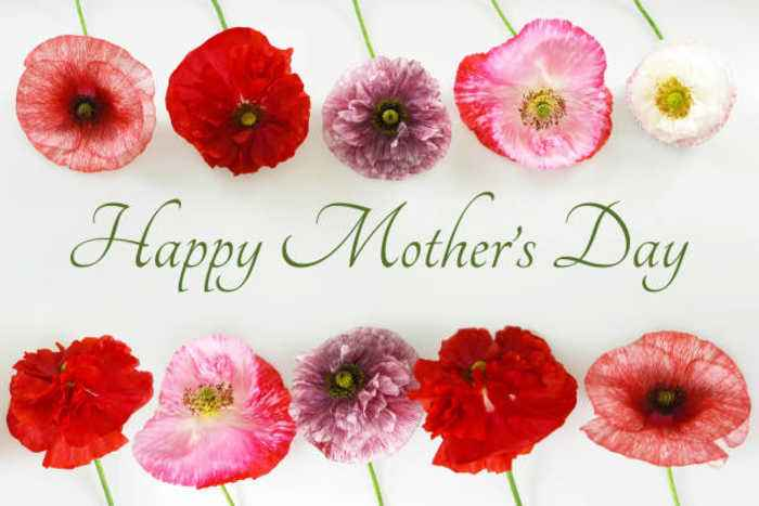 10 Facts About Mother's Day