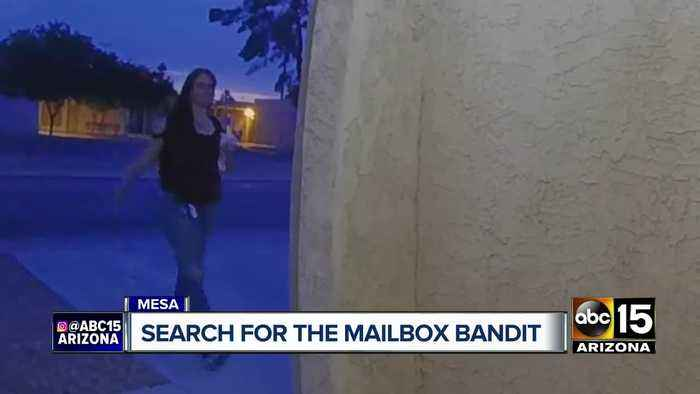 Search on for Mesa mail thief