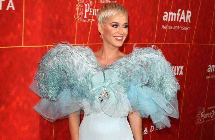 Katy Perry feels blessed by American Idol work