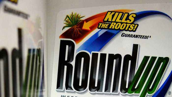 Bayer shares hit 7 year-low after $2 Billion award in roundup trial