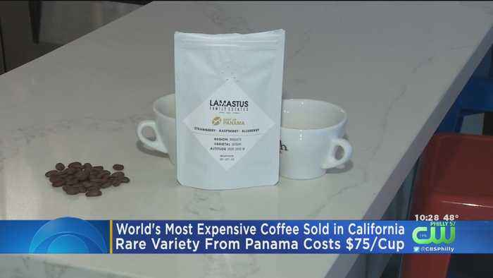 World's Most Expensive Coffee Costs $75 Per Cup